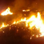 """Zjarr në """"18 Shtatori"""", dyshohet për zjarrvënie të qëllimtë (VIDEO)"""