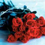 8 Marsi, urimi i kryebashkiakes Mandi për gratë e vajzat e Libohovës