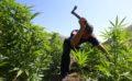 Pazaret e drogës, arrestohet në Gjirokastër një shtetas nga Venezuela