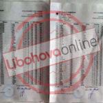 Listat e votuesve në Libohovë, mes tyre edhe banorë të Lazaratit