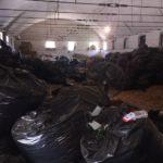 10 ton kanabis, kush fshihet pas magazinës së drogës në Përmet?