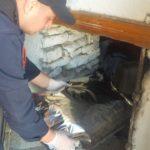 Kanabis në qilarin e shtëpisë, një i ndaluar dhe një në kërkim