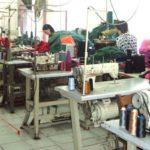 Programet e nxitjes, punë për 656 të rinj në Gjirokastër