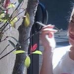 Big Brother, Fotinia flet për rrushin e Lazaratit