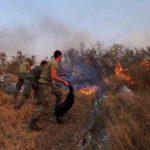 Zjarri në Dropull, Mirela Kumbaro: Mirënjohje për ata që sot u bashkuan kundër flakëve (FOTO)