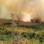 Zjarri masiv në Dropull, u rrezikua godina e bashkisë në Vrisera dhe shkolla e fshatit