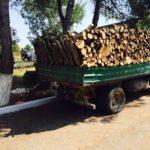 Transportonte dru zjarri pa leje, policia ndalon 33-vjeçarin nga Gjirokastra