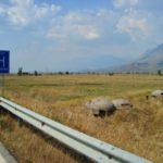 Ndërtuan pa leje një mur të lartë në tokën e bashkisë, nën hetim dy persona nga Jorgucati