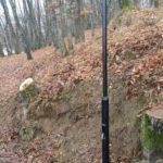 Shoqata 'Zagoria': Në krahinën tonë po abuzohet me prerjen e pyjeve