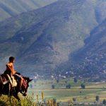 Nepravishta mes 12 fshatrave të qarkut Gjirokastër të përzgjedhur në programin për zhvillimin rural