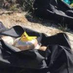 Gjenden dy çanta me kanabis te 'Arrat' në Dervician, policia në kërkim të autorëve