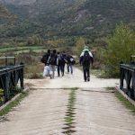 Gjirokastër, policia ndalon 19 klandestinë