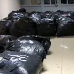 Operacion i policisë së Gjirokastrës, kapen rreth 500 kg kanabis, arrestohen babë e bir