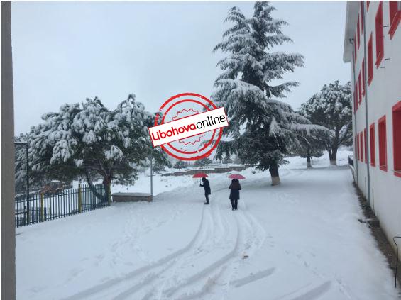 Nuk mbahet mend hera e fundit kur ka pasur kaq shumë dëborë në Libohovë. E keqja s'ka kaluar, situatë emergjente edhe për 24 orët e ardhshme (FOTO)