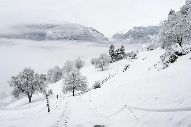 Emergjenca nga dëbora, rruga drejt Zagorisë e kalueshme vetëm me zinxhirë