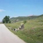 Gjirokastër, aksident në Valare. Shoferi plagoset pasi goditi me makinë…lopët